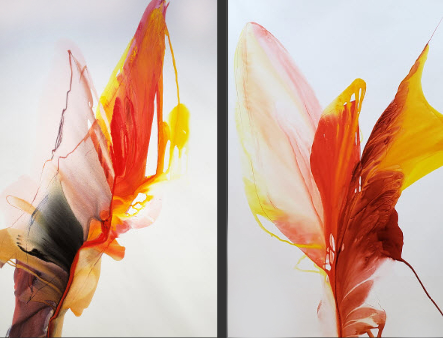 Emergence - diptych